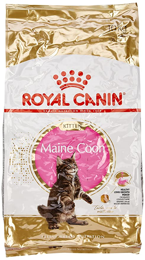 Royal Canin Comida para gatos Kitten Maine Coon 10 Kg