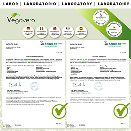 Goji Berries Vegavero®   500 mg   Antioxidante + Vitaminas y Minerales + Saciante + Vista   Luteína + Zeaxantina   120 Cápsulas   Vegano   Sin ...