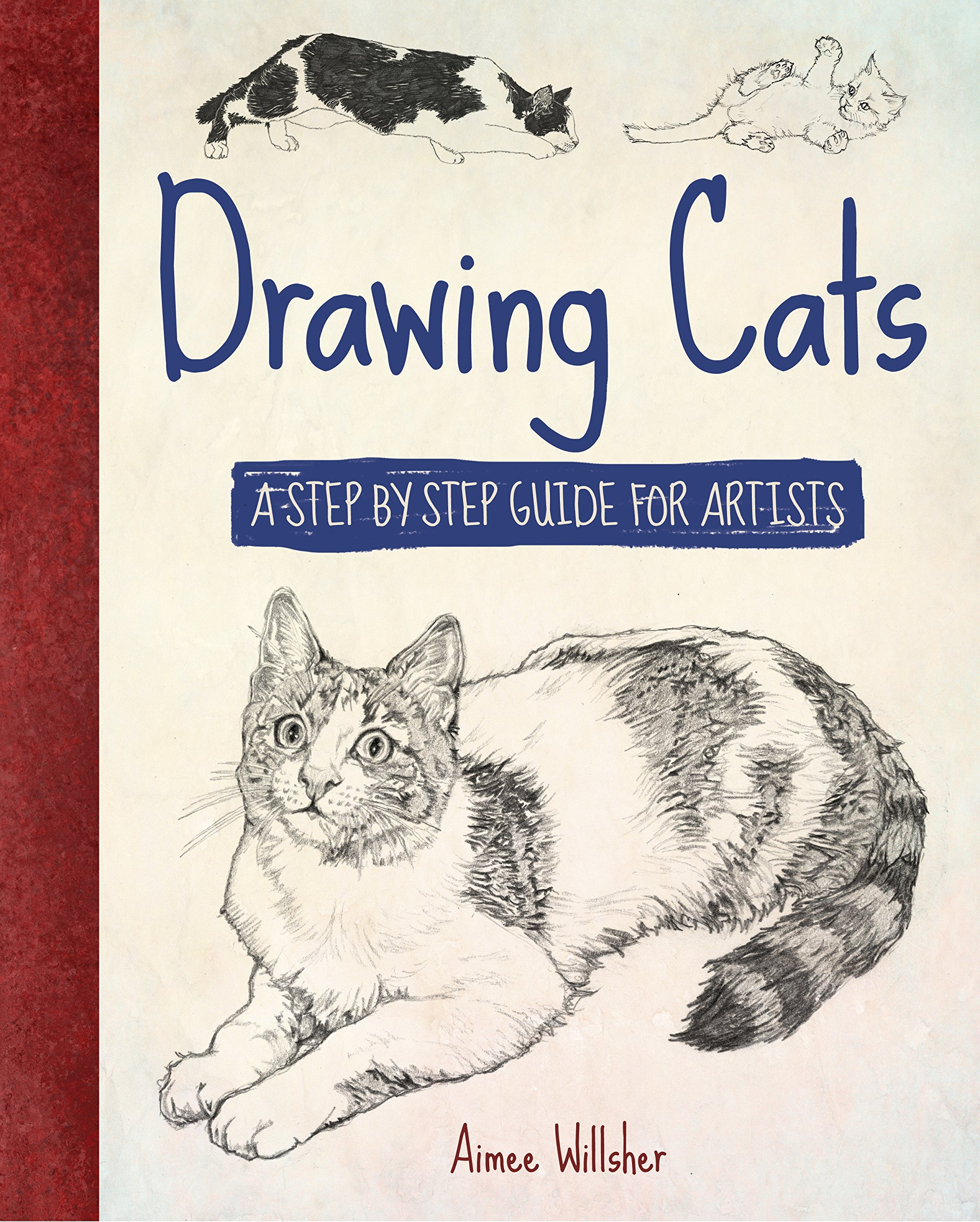 Drawing Cats Willsher Aimee 9781784047788 Amazon Com Books