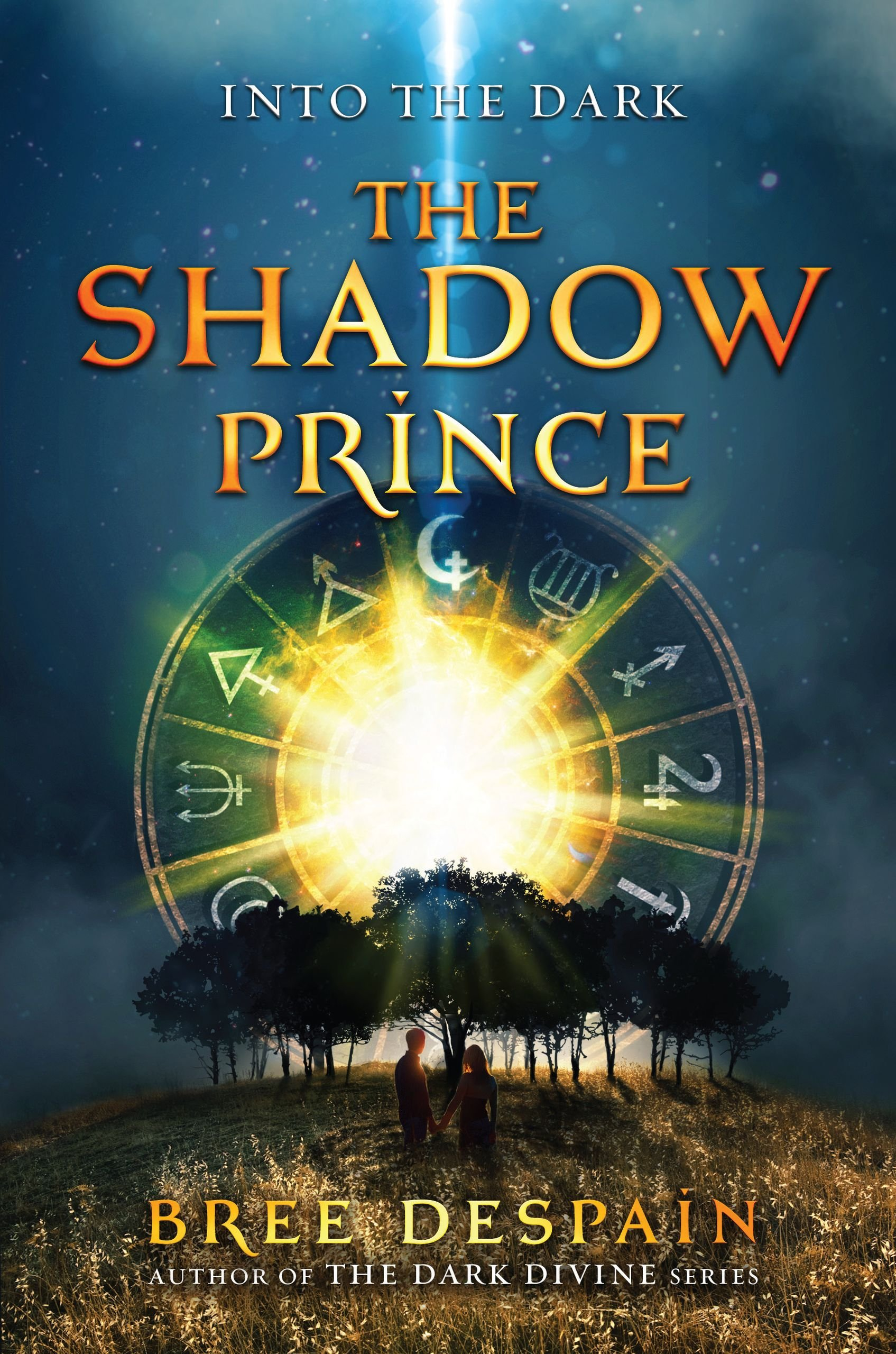 The Shadow Prince Into The Dark Amazon Co Uk Bree