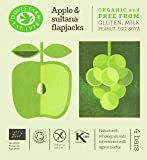 Doves Farm Gluten Free Apple and Sultana Flapjacks Multipack 4 x 35g (Pack of 7)