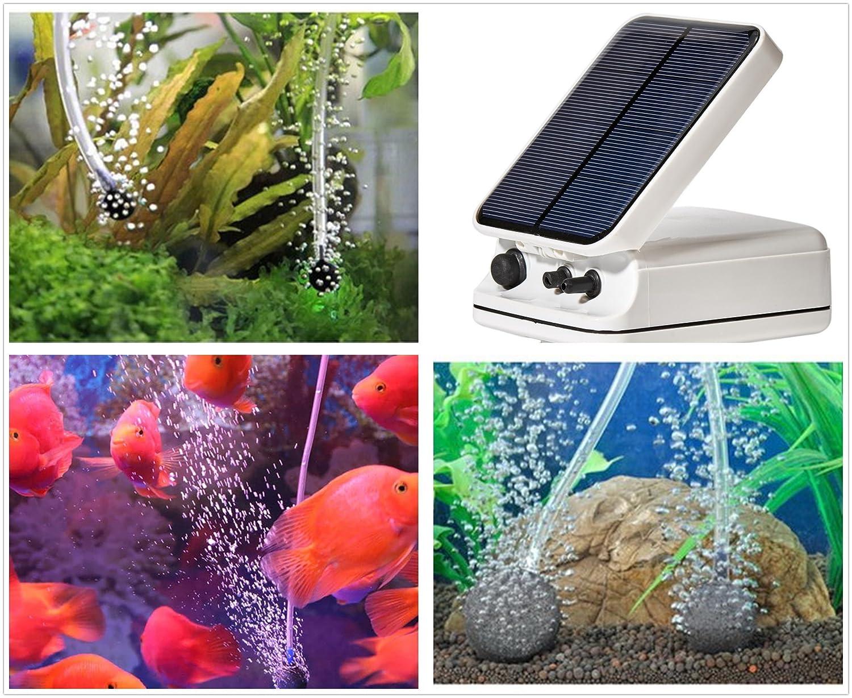 Sunnytech® Energía Solar estanque oxigenador Bomba de aire Oxígeno piscina acuario peces tanque mar pesca: Amazon.es: Jardín
