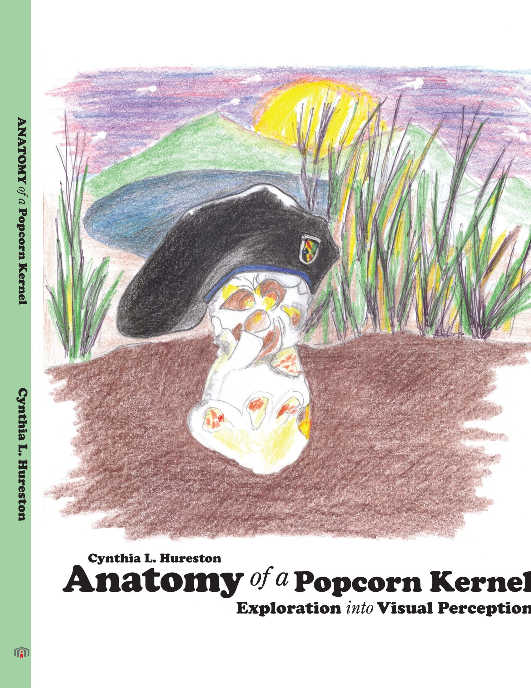 Anatomy of a Popcorn Kernel: Exploration into Visual Perception ...