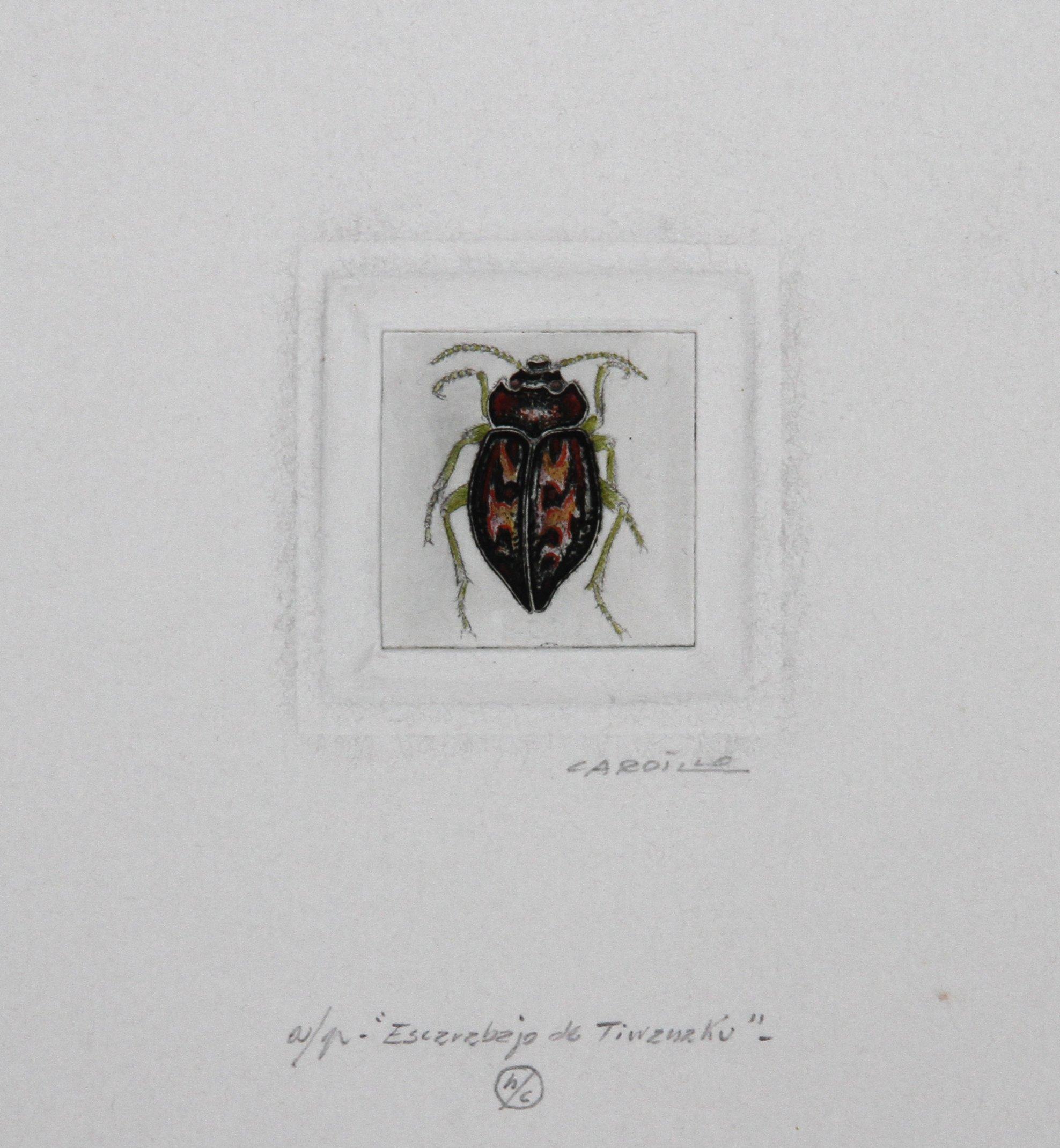 Escarabajo de Tiwanaku by