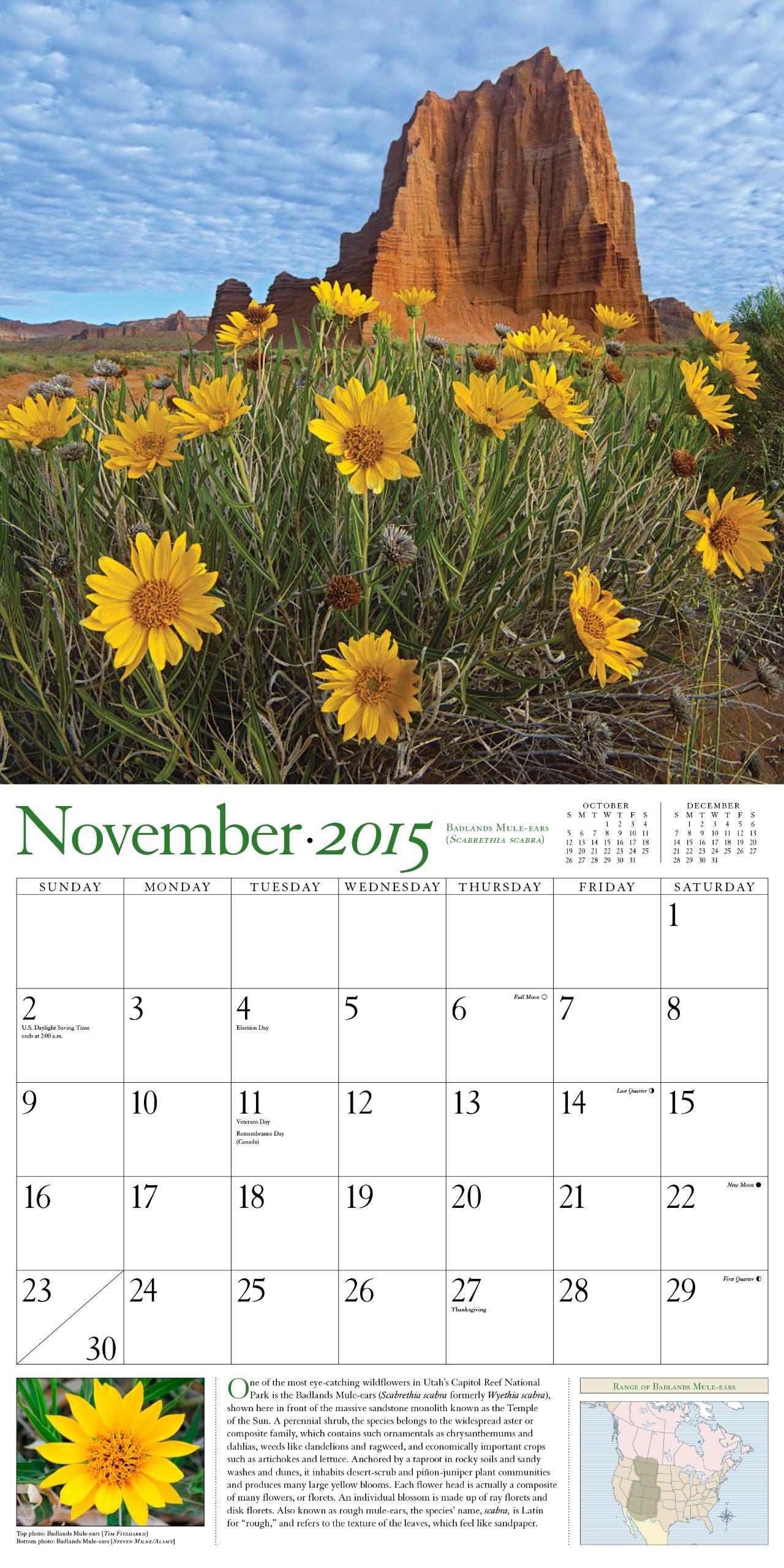 Audubon Wildflowers Calendar 2015: National Audubon Society: 9781579655754:  Amazon.com: Books