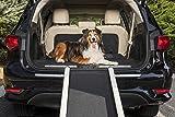 PetSafe Happy Ride Extendable Dog Ramp - Portable