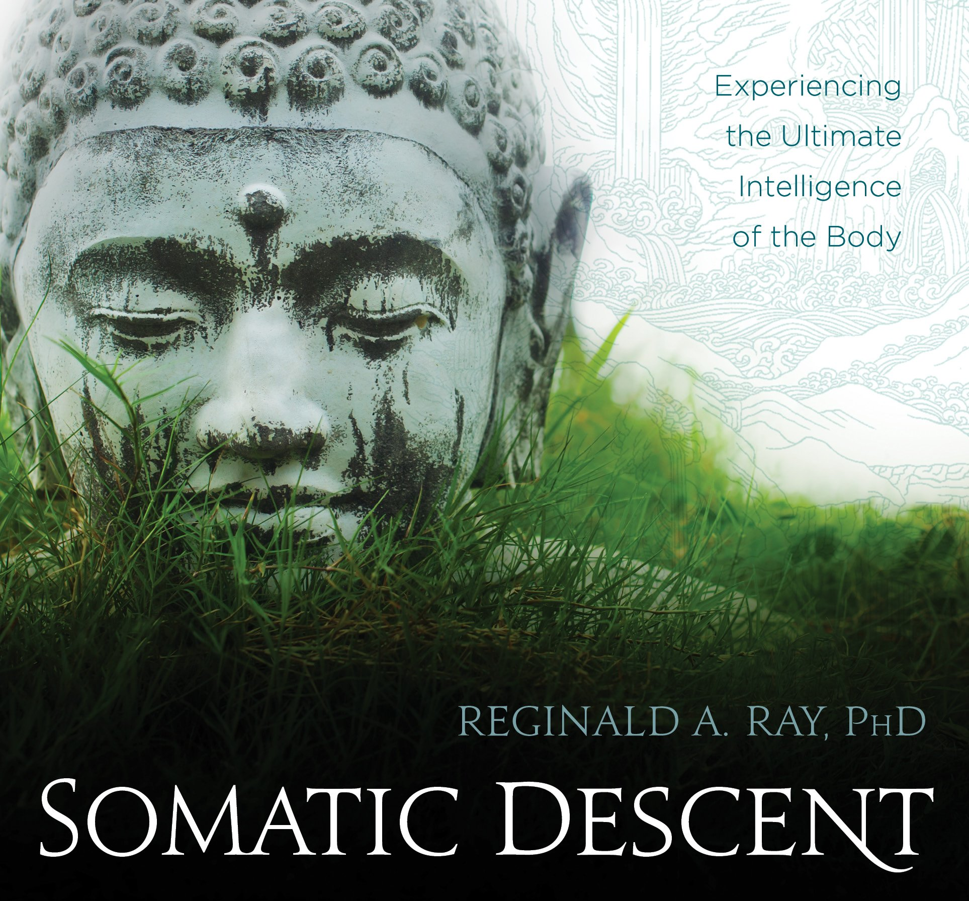 Somatic Descent: Experiencing the Ultimate Intelligence of the Body by SOUNDS TRUE RECORDS