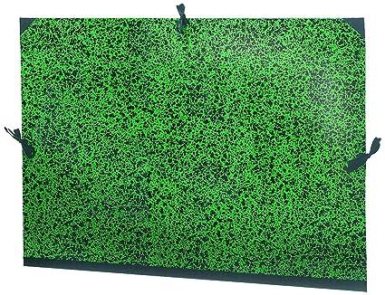 Esselte 52501 - Tarjeta de dibujo (72 x 52 cm), verde ...