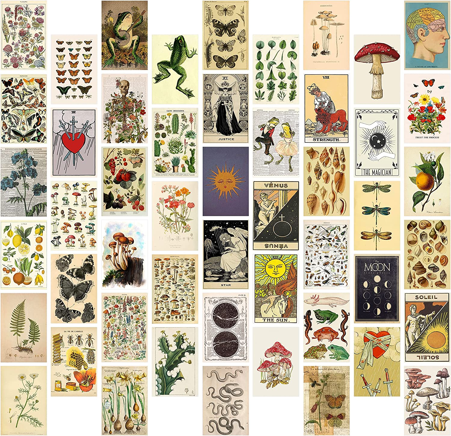8TEHEVIN 50PCS Vintage Botanical Tarot Aesthetic Pictures Wall Collage Kit, Trendy Small Poster for Dorm, Vintage Style Wall Art Print, Aesthetic Photo Collection, Bedroom Decor for Teens Boys Girls