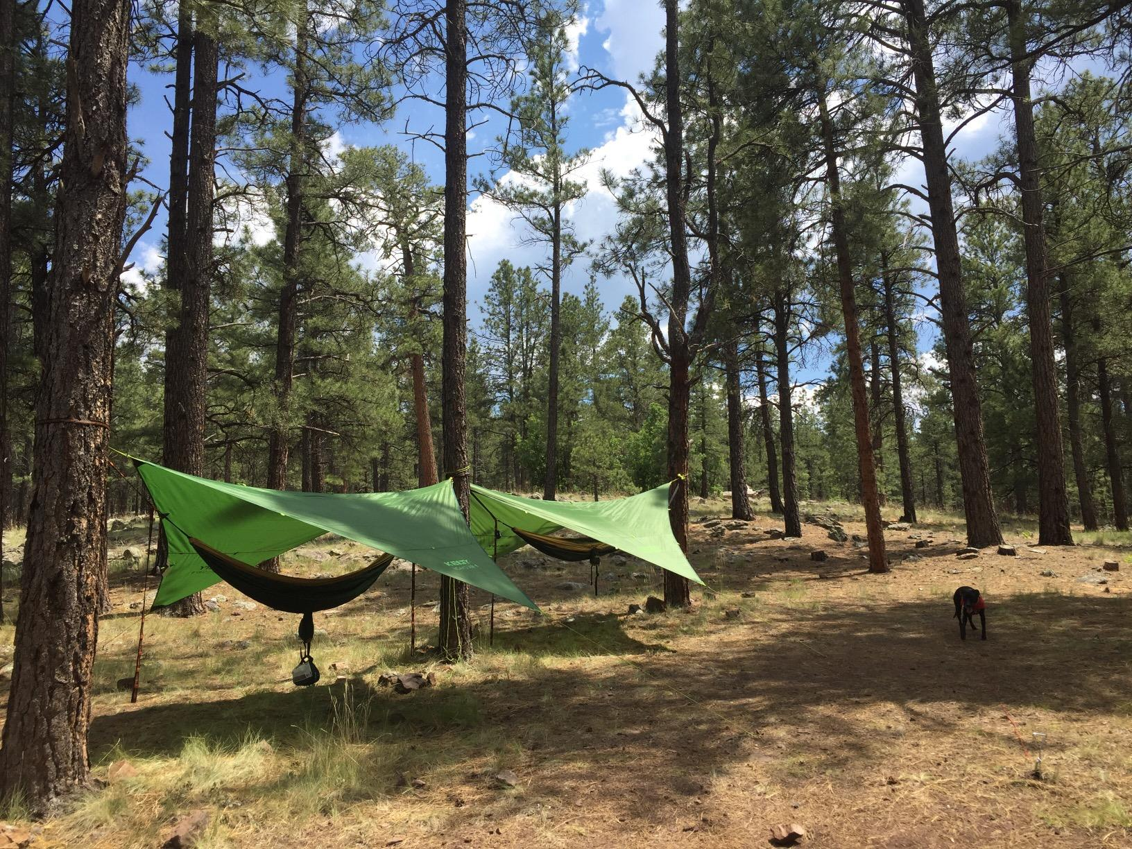 Kelty Noah's Tarp 12 -Rained on numerous times and no leaks at all