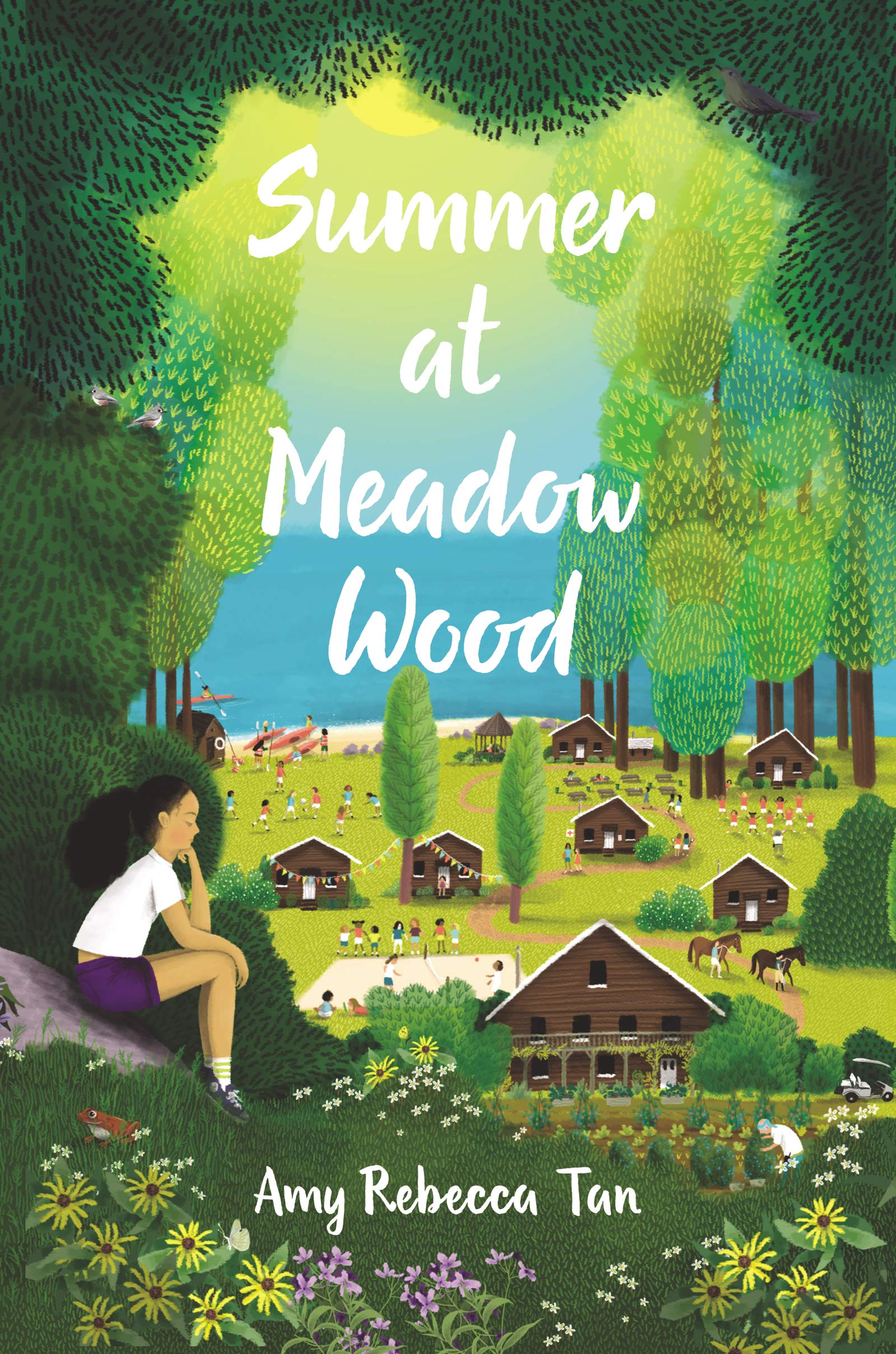 Summer at Meadow Wood: Tan, Amy Rebecca: 9780062795458: Amazon.com ...
