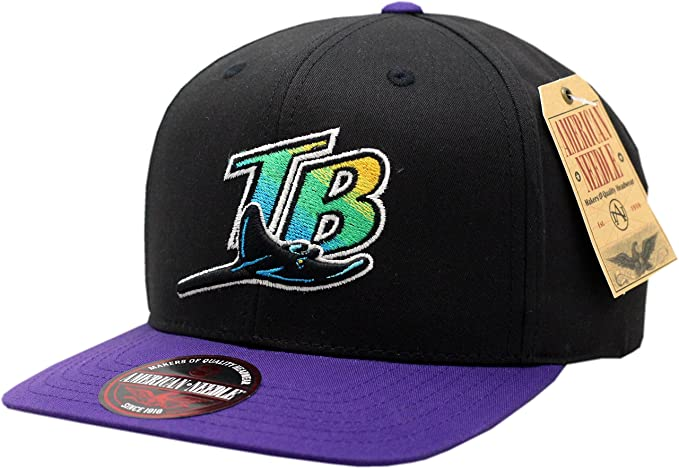 Amazon.com  Tampa Bay Devil Rays Snapback Flat Bill Outfield  Clothing 0ea48d74a2b