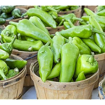 Sweet Yards Seed Co. Organic Anaheim Hot Pepper Seeds 'Joe E. Parker' – Approx 35 Open Pollinated Non-GMO Seeds : Garden & Outdoor