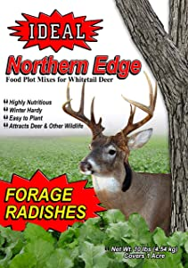 Ideal Northern Edge Forage Radishes, 10 Pounds, Red Coated Food Plot Seed