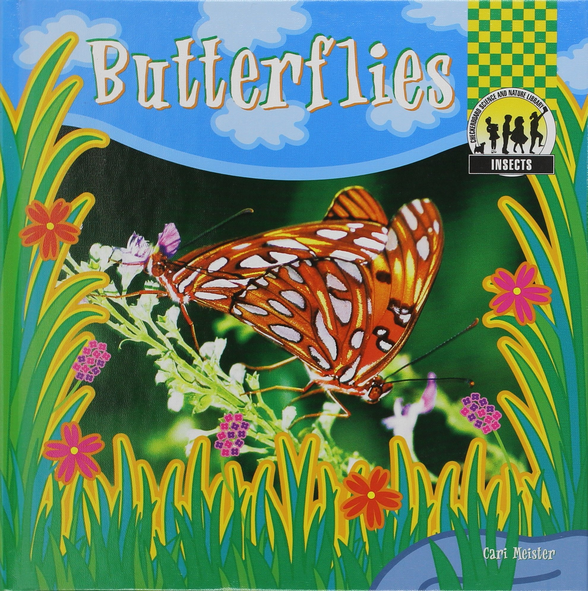 Download Butterflies (Insects) pdf epub