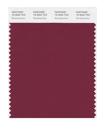 Amazon.com: Pantone Smart color Swatch tarjeta, 19-2024X ...