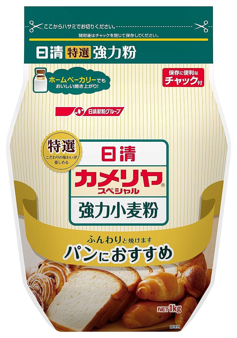 一族アンプ弁護士日清 お菓子百科 なめらかカスタードプリン 55g