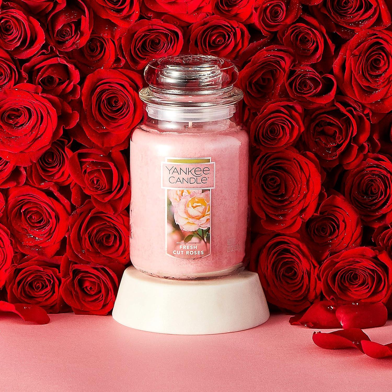 YANKEE CANDLE Grande Bougie en Pot 650 ML Lot de 6 Roses fra/îchement coup/ées