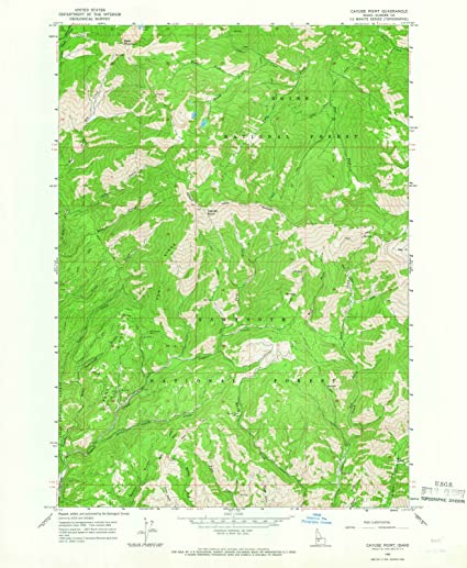 Amazon.com: Idaho Maps   1964 Cayuse Point, ID USGS Historical ...