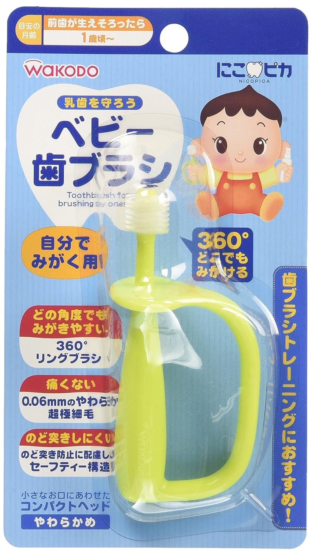 Wakodo Japan - And for polish Wakodo Nico Pika baby toothbrush yourself BH5