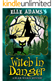 Witch in Danger (A Blair Wilkes Mystery Book 3)