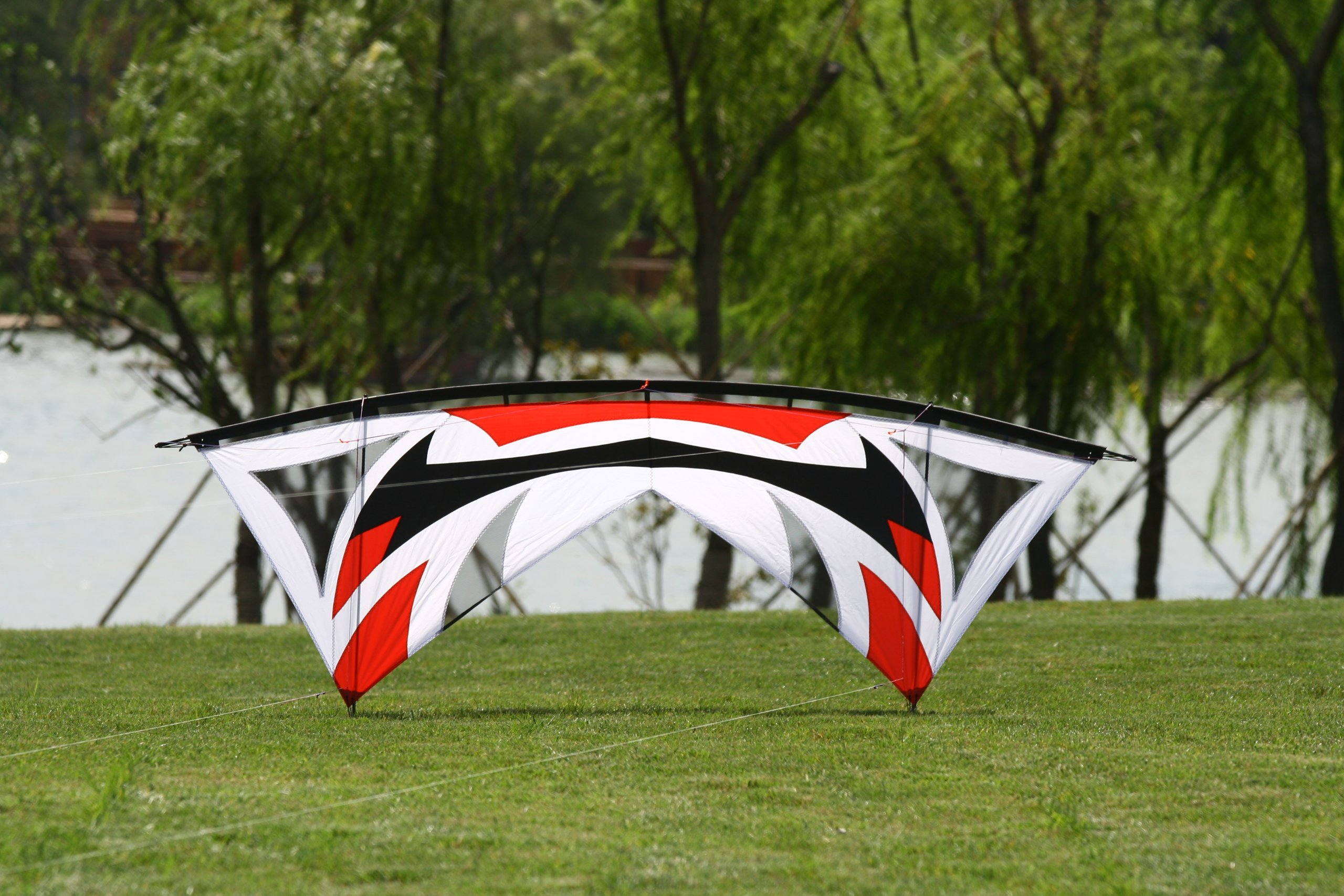 Hengda Kite Quad-line 7.9 Feet/2.4 Meter Stunt Kite with Dyneema Line + Quad Handle Package + Gauze Vent by Hengda kite