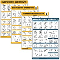 Palace Learning 4 Pack - Suspension Workout Posters Volume 1, 2 & 3 + Medicine Ball Oefening Grafiek - Set van 4 Posters