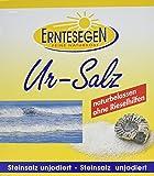 Erntesegen Ur-Salz naturbelassen, 1er Pack (1 x 5 kg)