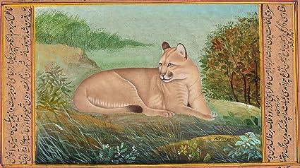 fragancia Petrificar insertar  Amazon.com: Indian miniatura estilo Puma Cougar Pintura Rare Handmade Wild  Mountain Lion arte: Home & Kitchen