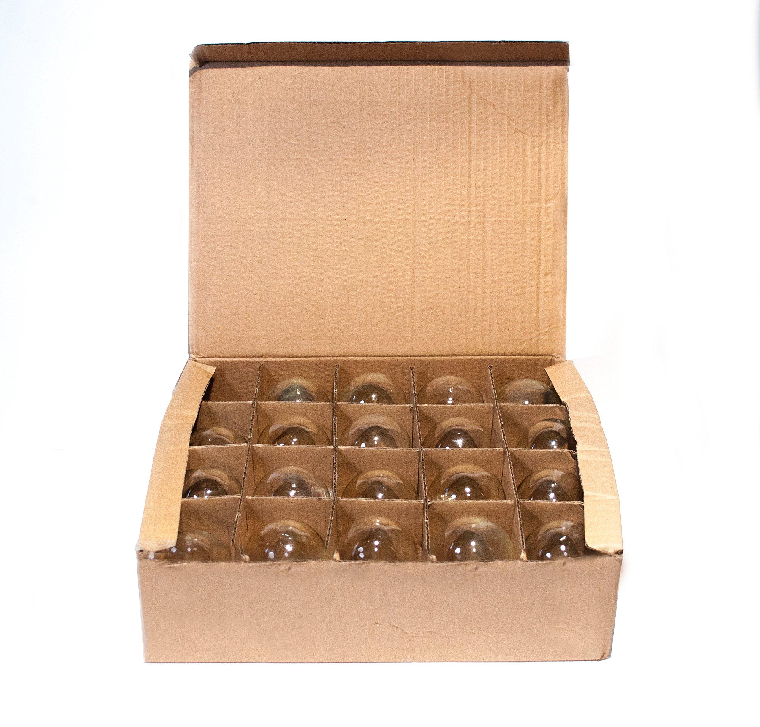 Box of 25 G60 Lantern Edison 2.5 Inch 7 Watt C9 E17 Base Replacement Bulbs by Hometown Evolution, Inc. (Image #4)