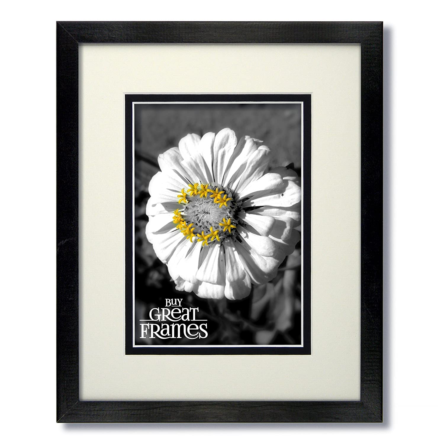 Amazon.com - One 16x20 Black Wood Frame and Glass with Warm White ...