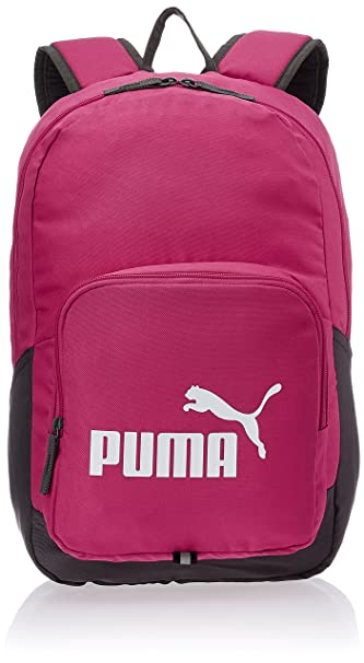 0715919f35b0 Puma Beetroot Purple Casual Backpack (7358905)  Amazon.in  Bags ...