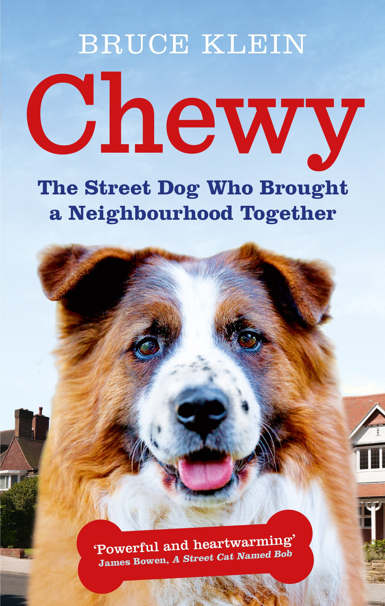 Download Chewy: The Street Dog who Brought a Neighbourhood Together pdf