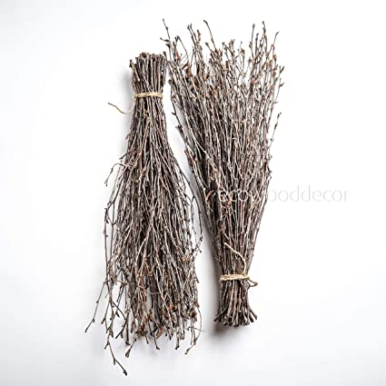 Amazon Com Birch Branches For Craftwork Or Vase Decoration Set Of