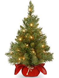 national tree 24 inch majestic fir christmas tree with 35 clear lights in burgundy cloth bag - Christmas Trees With Lights