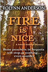 Fire is Nice Kindle Edition