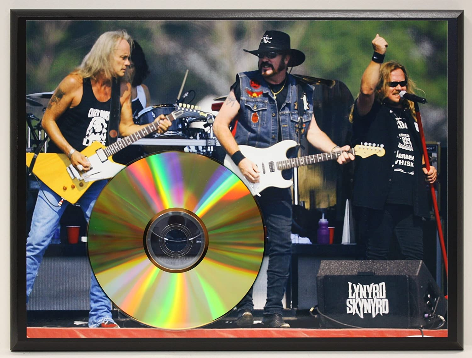 Lynyrd Skynyrd Limited Edition 24Kt Gold Award Quality Display Gold Record Outlet