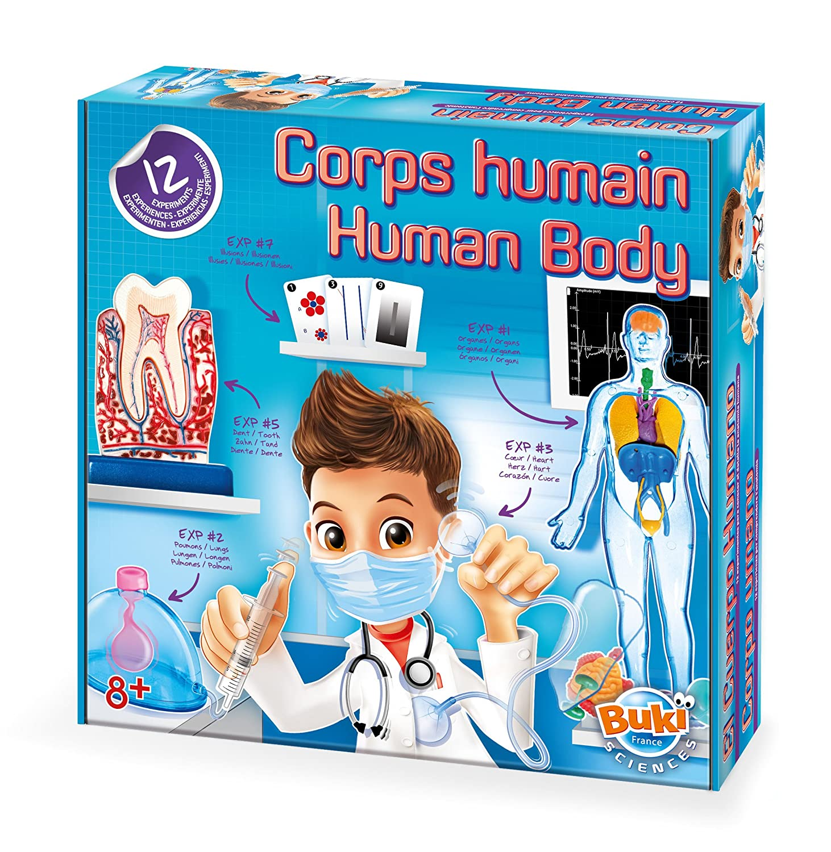 BUKI 2114 - der Menschliche Körper: Amazon.de: Spielzeug