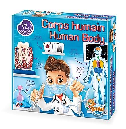 Amazon.com: Cuerpo Humano aprender sobre 5 Senses y 12 Kids ...
