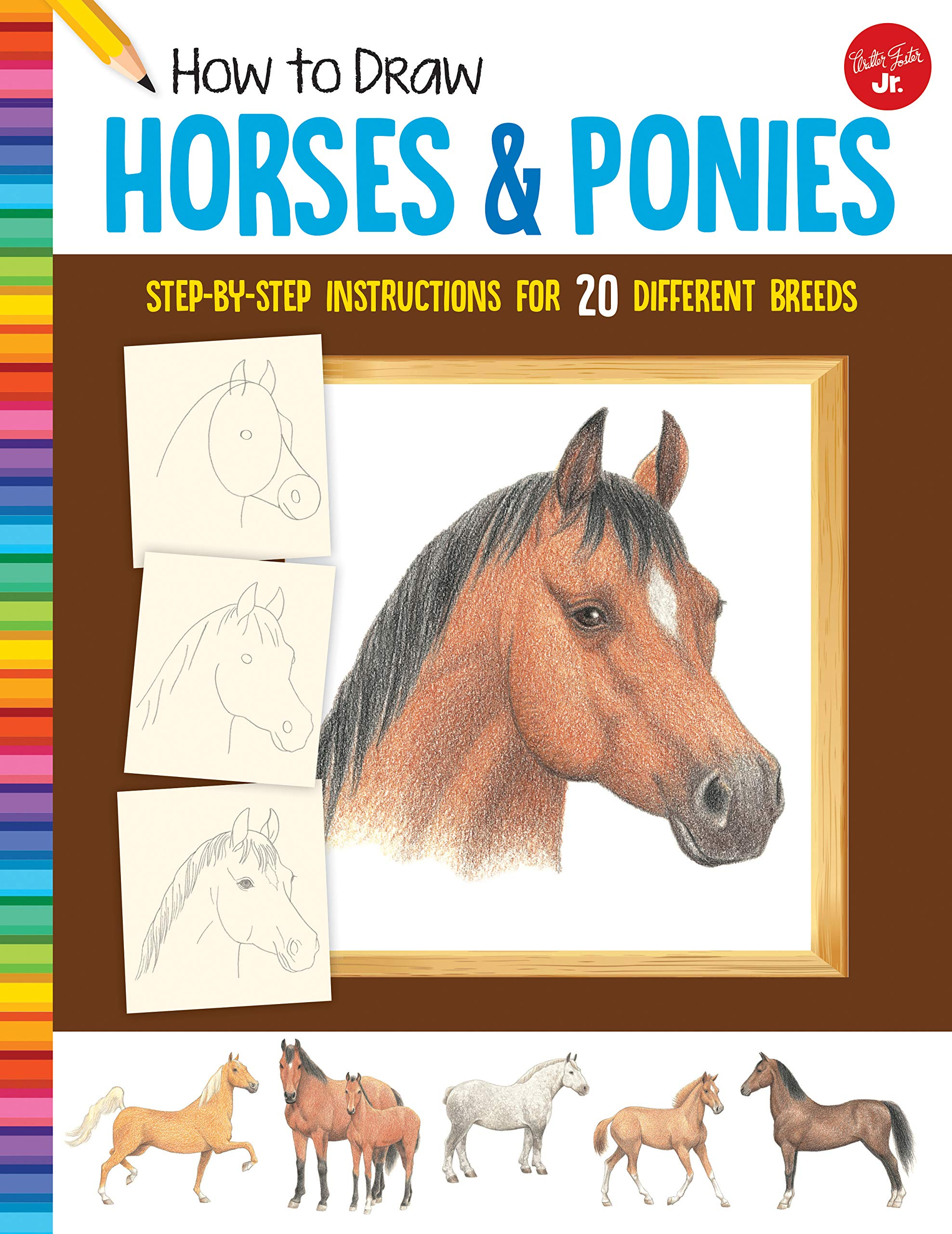 How To Draw Horses And Ponies  Step By Step Instructions For 20 Different Breeds
