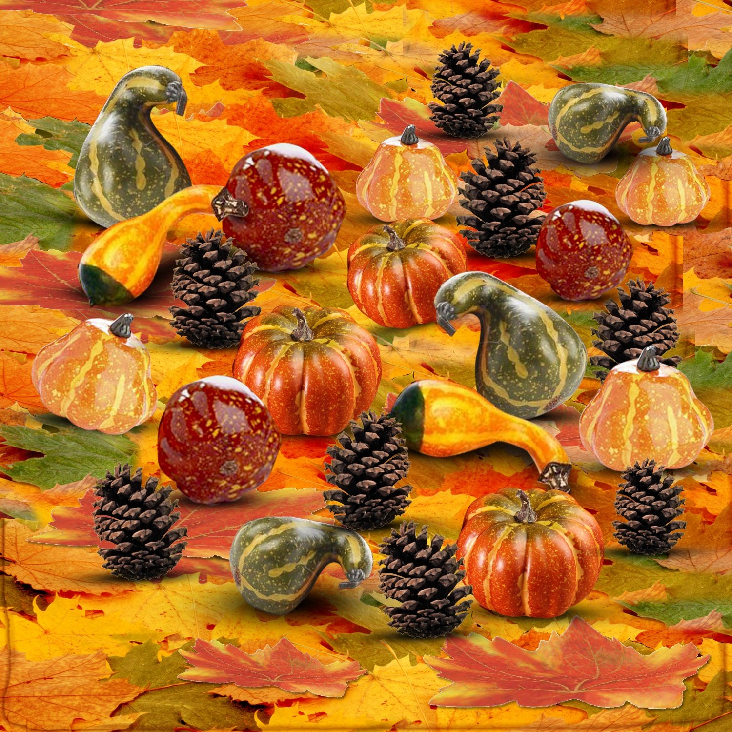 Thanksgiving Home Decoration Set of 250 Mini Maple Leaves + a Mix of 12 Artificial Mini Harvest Pumpkins and Gourds + 15 Pine Cones. Fall Autumn Wedding Décor & Parties