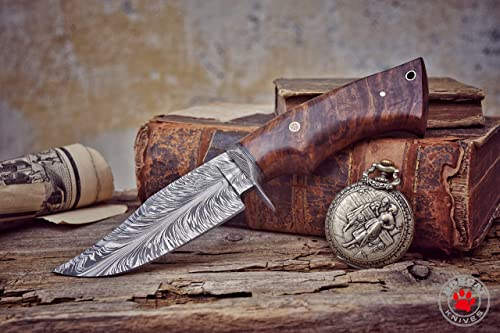 Bobcat Knives -10-inch Overall, Bladesmith Pride, Hunting Bowie Knife – Full Tang Fixed Blade Damascus Steel – Walnut Wood Handle with Leather Sheath