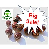 1.5 Pounds Greenwill Organic Soapberry / Soap Nuts (375 Loads) with 1 Wash Bag