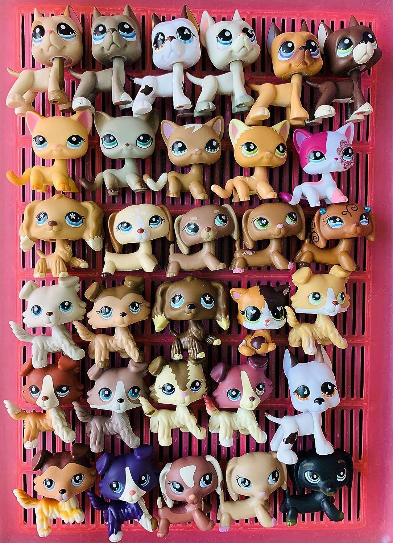 5 Lot Littlest Pet Shop lps Collie Great Cocker Spaniel Short Hair+7 Accessories