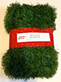 Amazon Price History for:50 Foot Non-Lit Green Holiday Soft Garland