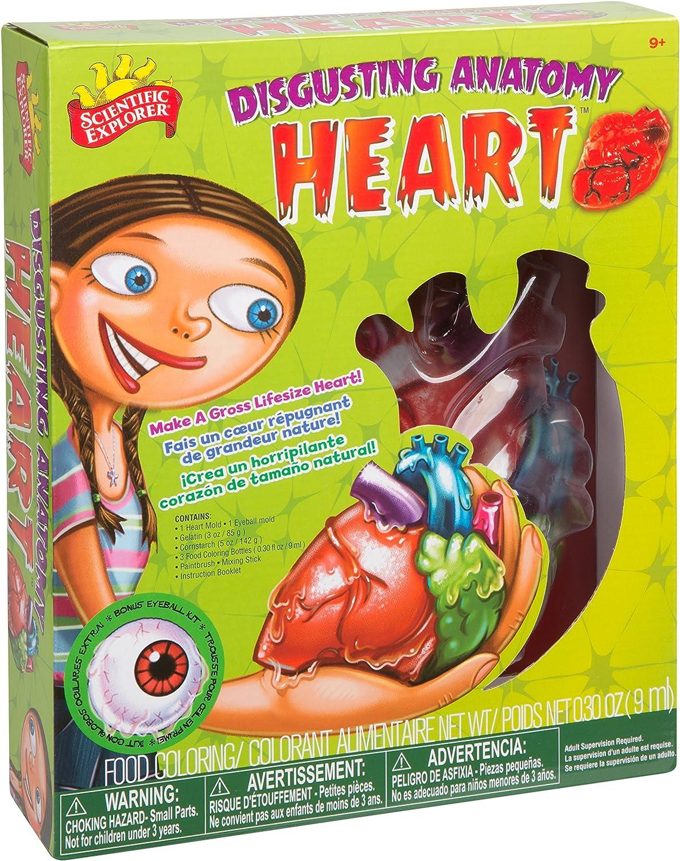 Scientific Explorer Disgusting Anatomy Heart