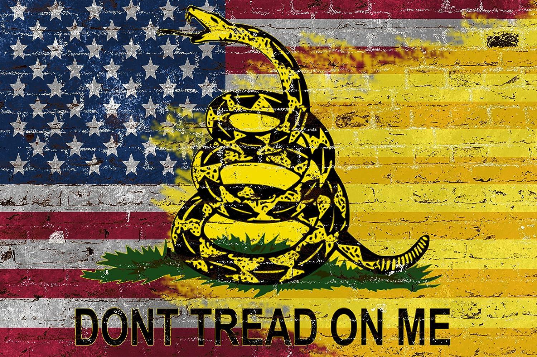 Amazon Com Chicago Walls Don T Tread On Me American Flag Wall