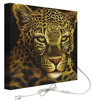 Decoralive Leopardo Frente - Cuadro retroiluminado, 50 x 50 x 5 cm: Amazon.es: Hogar