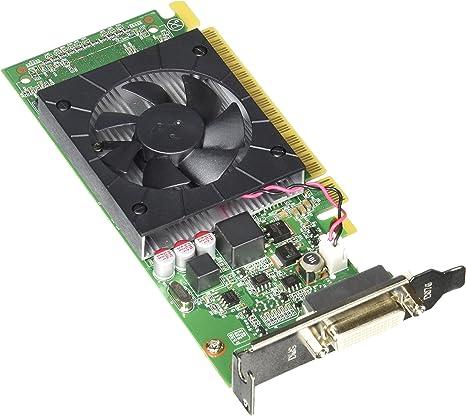 Amazon.com: NVIDIA GeForce 605 tarjeta gráfica 0b47073 ...