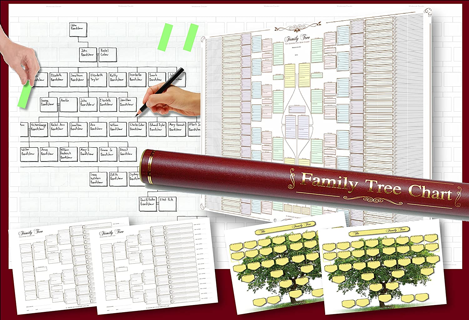 Pack of 6 Family Tree Charts in a Deluxe tube My History